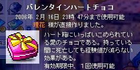 20060216135820.jpg