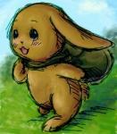 小兔葳威喜歡出門玩~