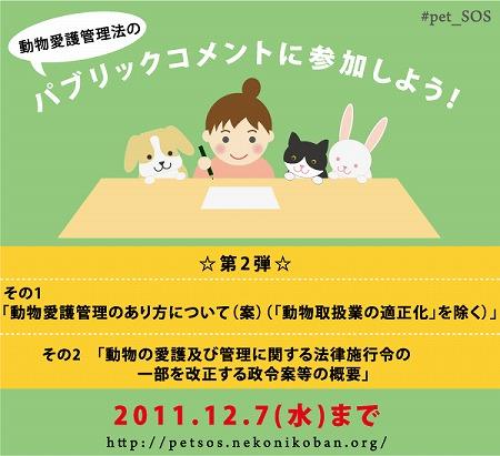2011-11-25-1.jpg
