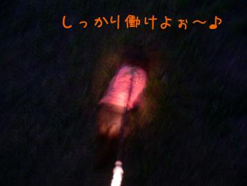 2007.10.20 (17)のコピー