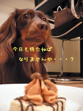 2007.10.29ハロウィン (7)のコピー