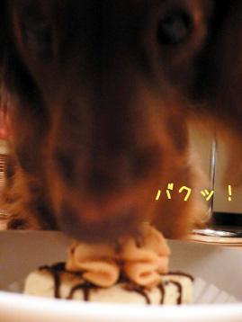 2007.10.29ハロウィン (9)のコピー