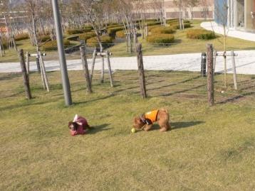2007.11.15豊洲 (44)