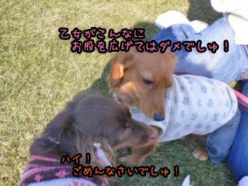 2007.11.24横浜大桟橋 (8)のコピー