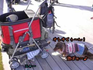 2007.11.24横浜大桟橋 (19)のコピー