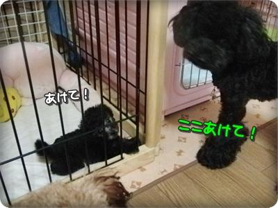 0725ゆっち&しゅう3