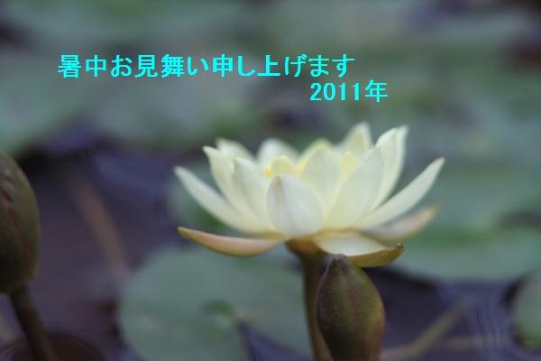 IMG_6666819.jpg