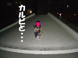 20070509230828.jpg