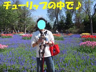 20070520214813.jpg