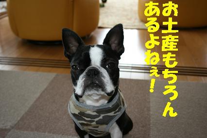 20070703213035.jpg