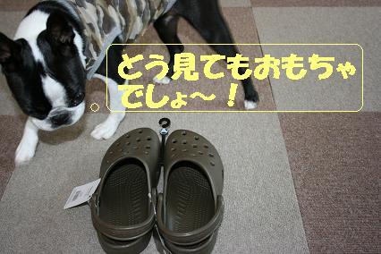 20070703213830.jpg
