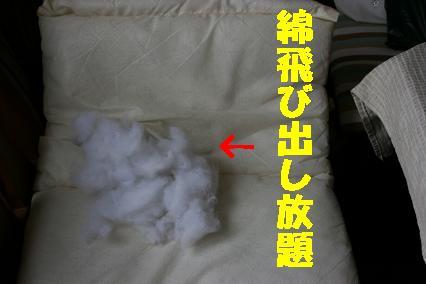 20070705214358.jpg