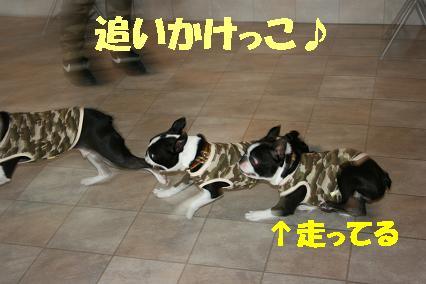 20070713191616.jpg