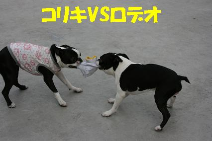 20070716213730.jpg
