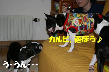20070728183209.jpg