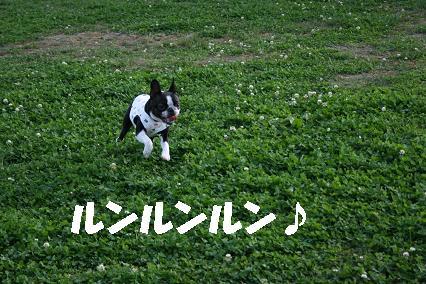 20070915230611.jpg