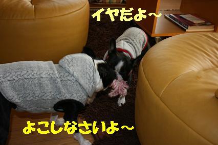 20071121213316.jpg