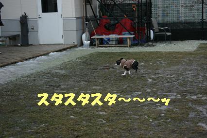 20071126094343.jpg