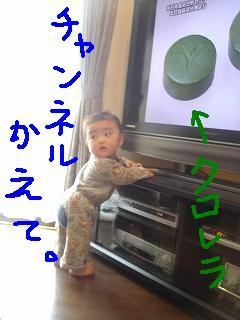 DSC03789.jpg
