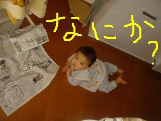 DSC04039.jpg