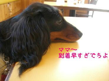 PHOTO008mo6.24.jpg