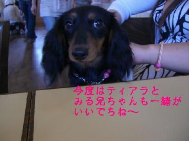 PHOTO068m6.29.jpg