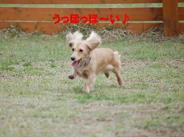 PHOTO073t5.21.jpg