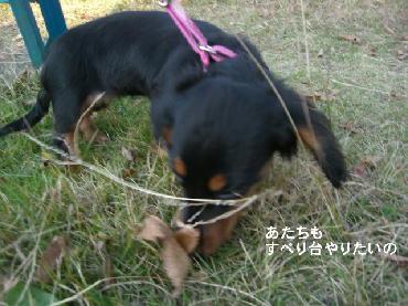 PHOTO079mo.jpg
