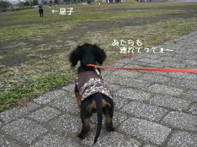 PHOTO112mo.jpg