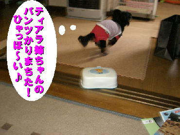 PHOTO363m3.19.jpg