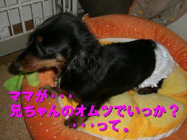 PHOTO366m3.19.jpg
