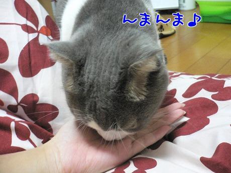 J6f8yiI_.jpg