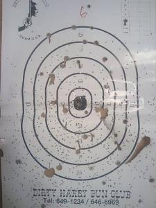 gun330375.jpg