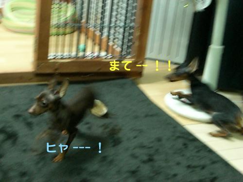 nakayoshi03.jpg