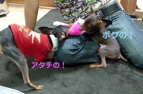 nakayoshi09.jpg