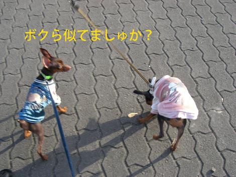 ryokuchi02.jpg