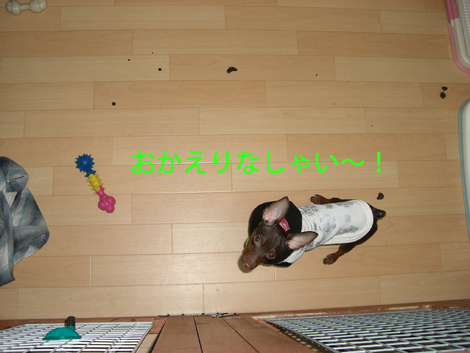 unchan01.jpg
