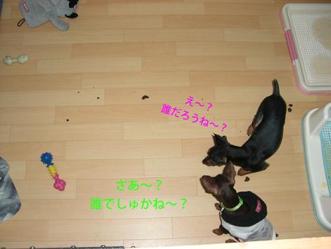 unchan03.jpg