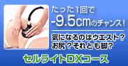 main_banner1.jpg