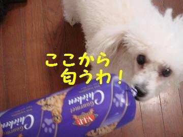 20071029180103.jpg