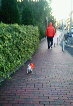 20071124朝散歩