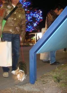 20071123軽井沢4ブログ用