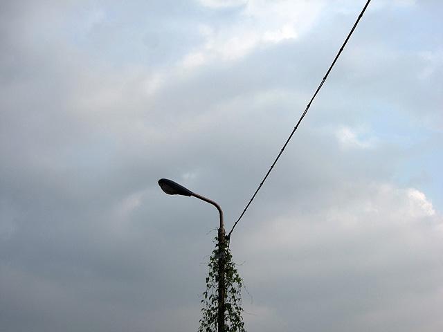 この街灯、絵になるんだよね