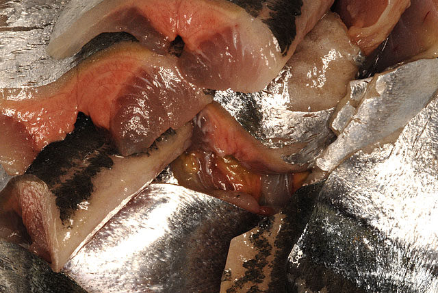 秋刀魚の刺身 070807