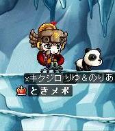 Maple0416.jpg