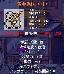 Maple0938.jpg