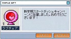 Maple1351.jpg