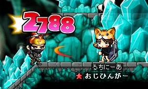 Maple1461.jpg