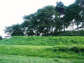 悠久の草原