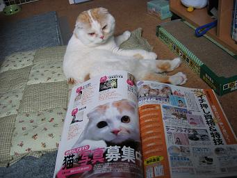 雑誌に載ったの